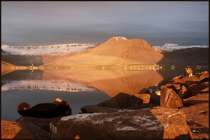 Icelandic landscape with reflections in a lake